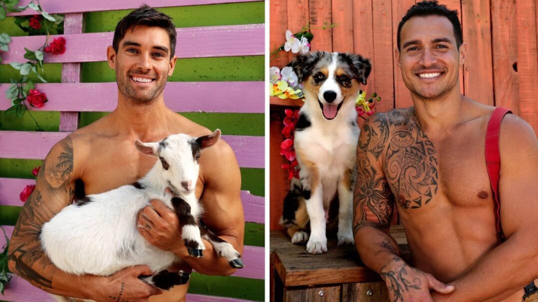 Przystojni strażacy i słodkie zwierzęta. Charytatywny kalendarz w dobrej sprawie