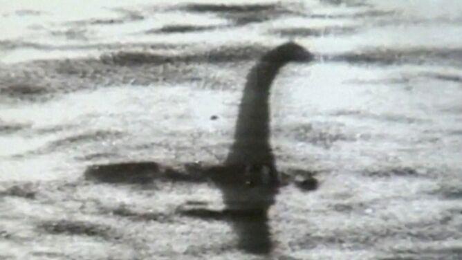 Na tropie potwora z Loch Ness. Naukowcy przebadali próbki DNA z jeziora
