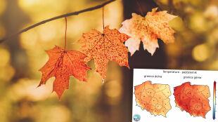 Pogoda na październik. Prognoza długoterminowa IMGW