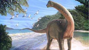 """""""Szczęka opadła mi na podłogę"""". Dinozaur, który połączył dwa kontynenty"""