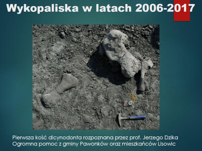Pierwsza kość dicynodonta (prezentacja dr hab. Tomasza Suleja)