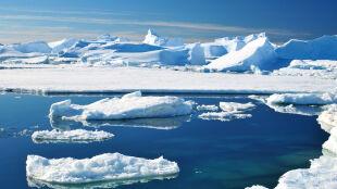 W 13 lat pochłonął 40 proc. gazów cieplarnianych, jakie wyprodukowaliśmy