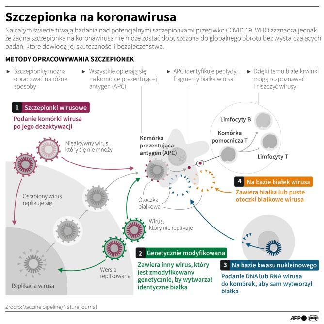 Szczepionka na koronawirusa (Maciej Zieliński, Adam Ziemienowicz/PAP/AFP)