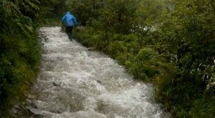 Jednym ze szlaków w tatrzańskim parku płynął rwący potok (Lucka Farkašová)
